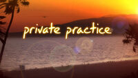 Privatepracticelogo