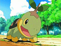 EP500 Turtwig de Gardenia