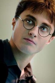 Harry Potter HP6D-01760r v2