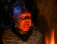 Neelix klingon