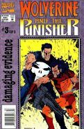Wolverine and The Punisher Damaging Evidence Vol 1 3