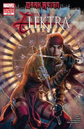 Dark Reign Elektra Vol 1 2