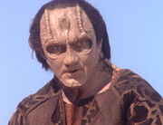 Elim Garak, 2374