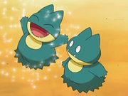 EP545 Munchlax (2)
