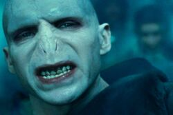 Voldemort snarl