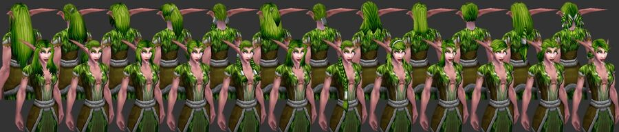 NightElf Female Hairstyles