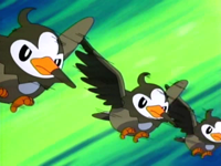 EP472 Starly usando doble equipo