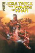 The Wrath of Khan issue 1 cover B