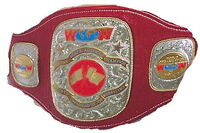 Stampede North American Heavyweight Championship