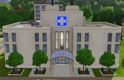 Sacred Spleen Memorial Hospital