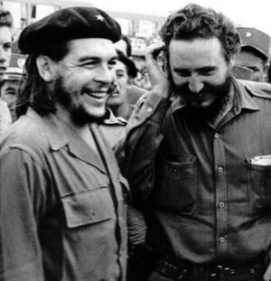 Che and fidel castro