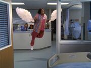 6x10 Laverne flys