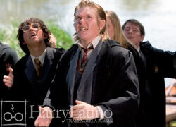 Young Peter Pettigrew