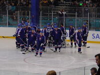 Slovakia men&#39;s ice hockey team in 2002