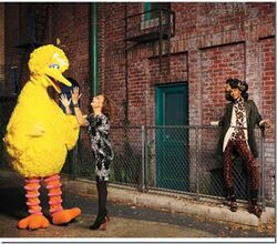 US Harper&#39;s Bazaar Big Bird and Diane