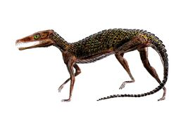 Pedeticosaurus