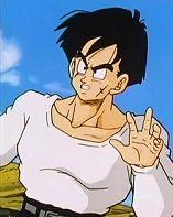 Yamcha4