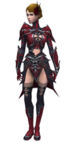 Necromancer Elite Necrotic armor f.jpg