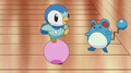 EP606 Piplup y Marill jugando.png