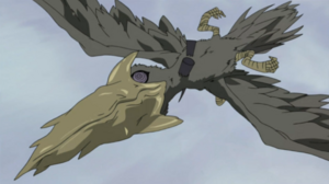 Uzumaki Nagato (Young) 300px-Giant_Drill-Beaked_Bird