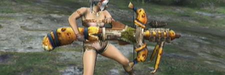 liste des armes de monster hunter tri RoldorosBowgun