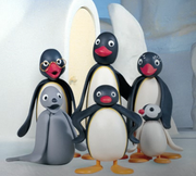 Pingu Main characters