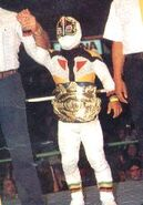 Mascarita Sagrada CMLL World Minis