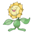 192Sunflora.png