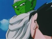 Gohan piccolo 6