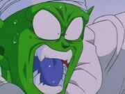 Piccolo4