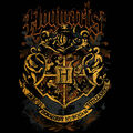 Hogwarts Crest (design for t-shirt).jpg
