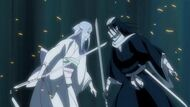 Sode no shirayuki in equal footing with byakuya