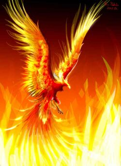 Phoenix-