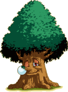Maku Tree (Oracle of Seasons)