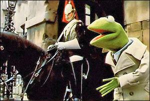 Kermit london70s