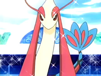 EP387 Milotic de Galano