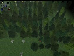 Pine Woods Tileset