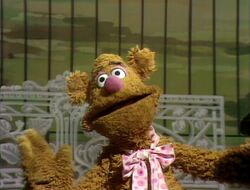 111fozzie2