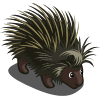 Porcupine-icon