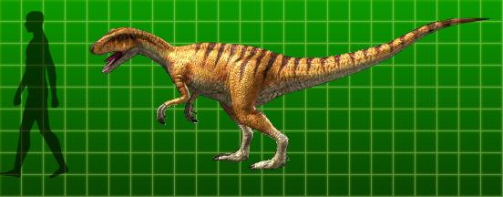 Dinosaur King Allosaurus Card