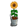 Sunflower in Bucket-icon