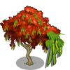 Gulmohar Tree-icon