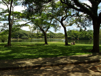 Ibirapuera park - So Paulo