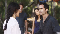 6x10 ConfrontingAlpert