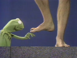 Kermit feet