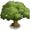 Oak Tree 2-icon