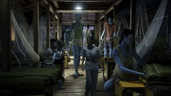 Avatar sleeping compound 2