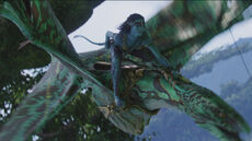 Neytiri.Flying.Hometree.screencap