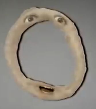 Onion Ring