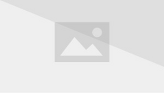 Elephant fridge